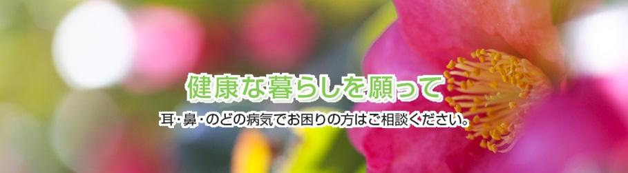 医療法人はなみ会伊藤耳鼻咽喉科TOP